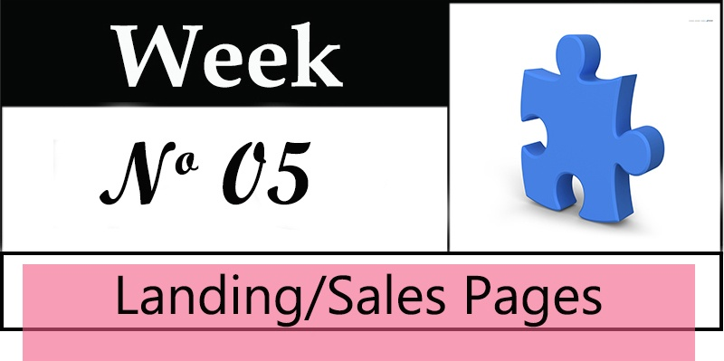 Week 5 of a 10 Week Sales Funnel